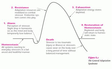 lazarus and stress